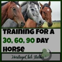"Horses | Horse Training | Horse Care | ""What should a horse know by the end of 30 days?"" Print out this helpful, FREE printable: The 30 60 90 day horse to give you a training starting point."
