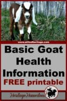 Goats | Goat Care | Goat Health | FREE Basic Goat Health Information, Upkeep and Health Tracker Printable. Keep track of your goats information on a regular basis.