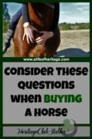 "Horses | Owning Horses | Buying a Horse | Print out the FREE worksheet: ""My Ideal Horse Is"" to aid you in buying a horse of your dreams. You will be glad you spent the time to figure it all out!"