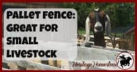 Pallet | Pallet Fence | Goat Fence | Livestock Fencing | 6 reasons that I think a pallet fence makes the best fence for small livestock! Pictures and instructions included on how the pallet fence was built.