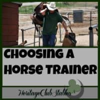 """Horse Training 