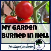 "Spiritual Encouragement | Christian Living | Strengthening your spiritual life | My garden burned in hell.That caught your attention, right? Me too! When I first thought it, I sat back on my heels and thought, ""Oh, man. That's bad."""