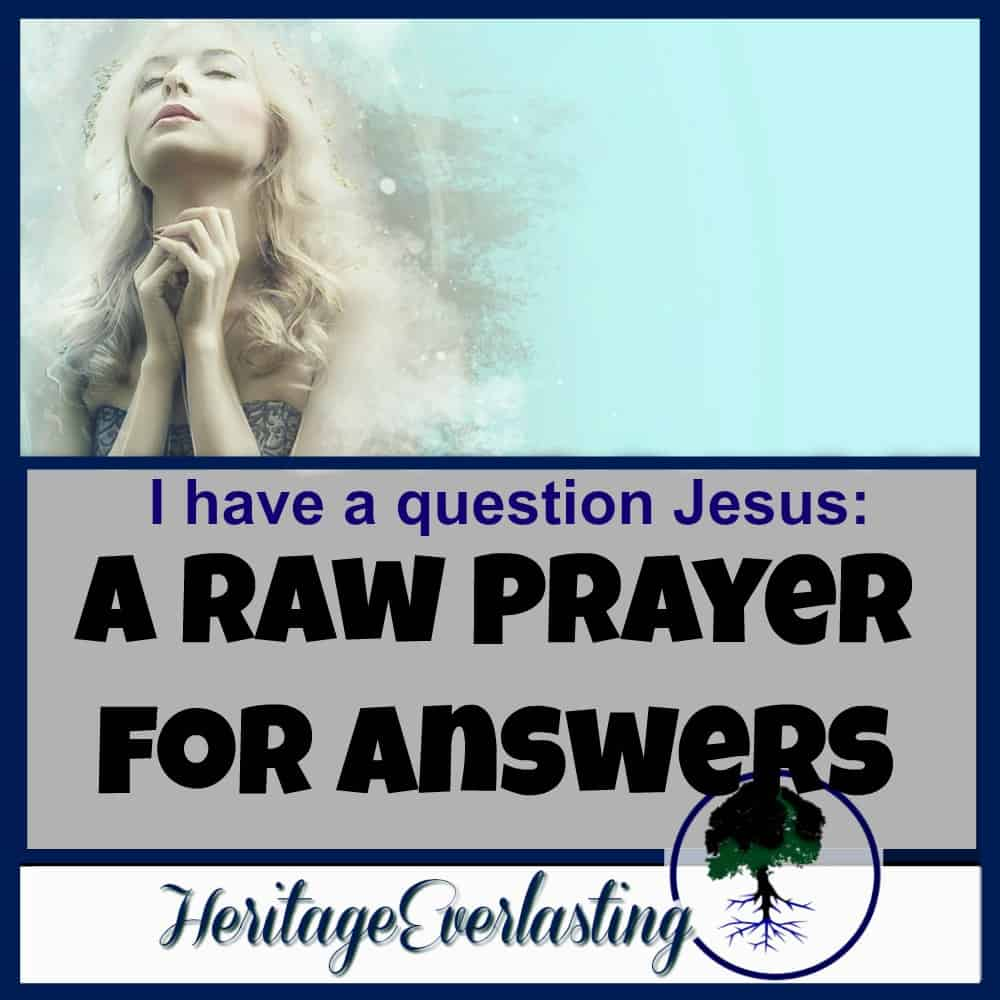 I have a question Jesus: A Raw Prayer for Answers