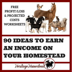 Planning Out a Profitable Homesteading Year