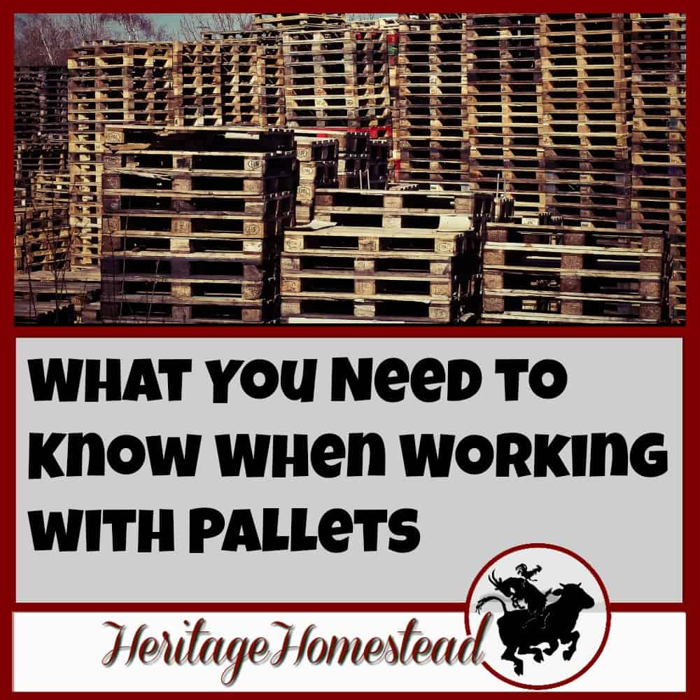 What You Need to Know When Working with Pallets