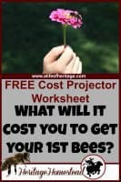 Bees | Bee Care | Complete list of Beekeeping supplies | Bee Cost projector | A complete list of beekeeping supplies: you should be well aware of what you will need to have ready and what the whole endeavor will cost.