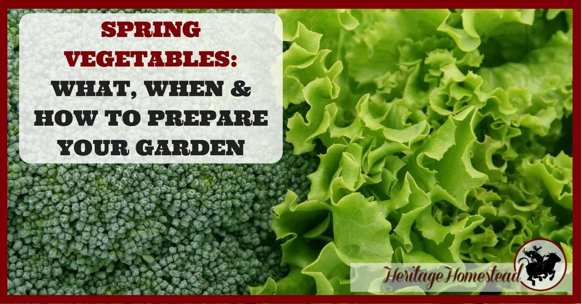spring vegetables what when how to prepare your garden a