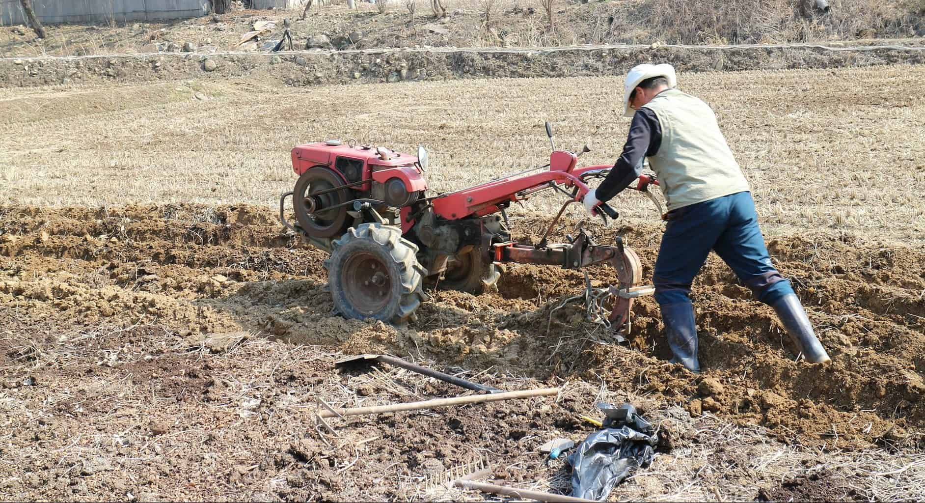alifeofheritage.comWhy You Absolutely MUST Do No-Till Gardening