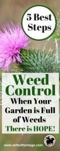 5 best steps for weed control when your garden is full of weeds. Gardening is hard work, so help yourself take back control, it's not too late.