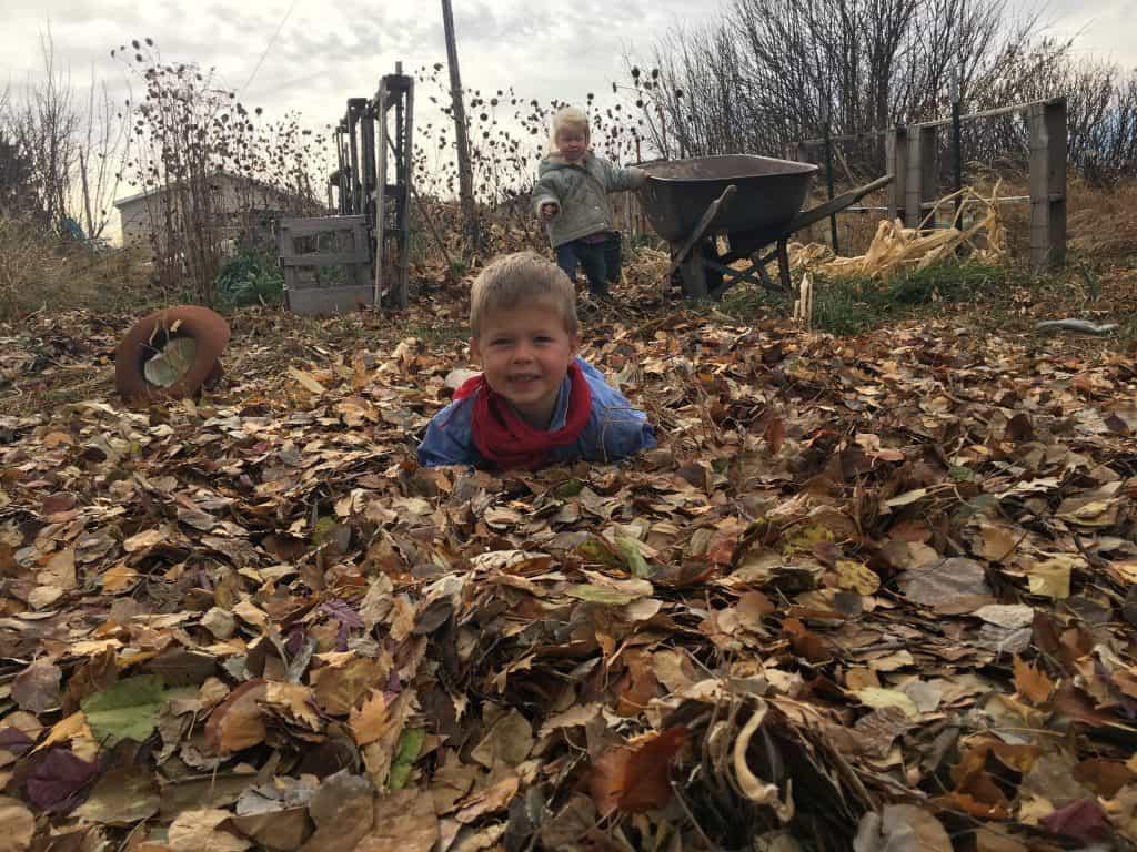 Fall Mulching