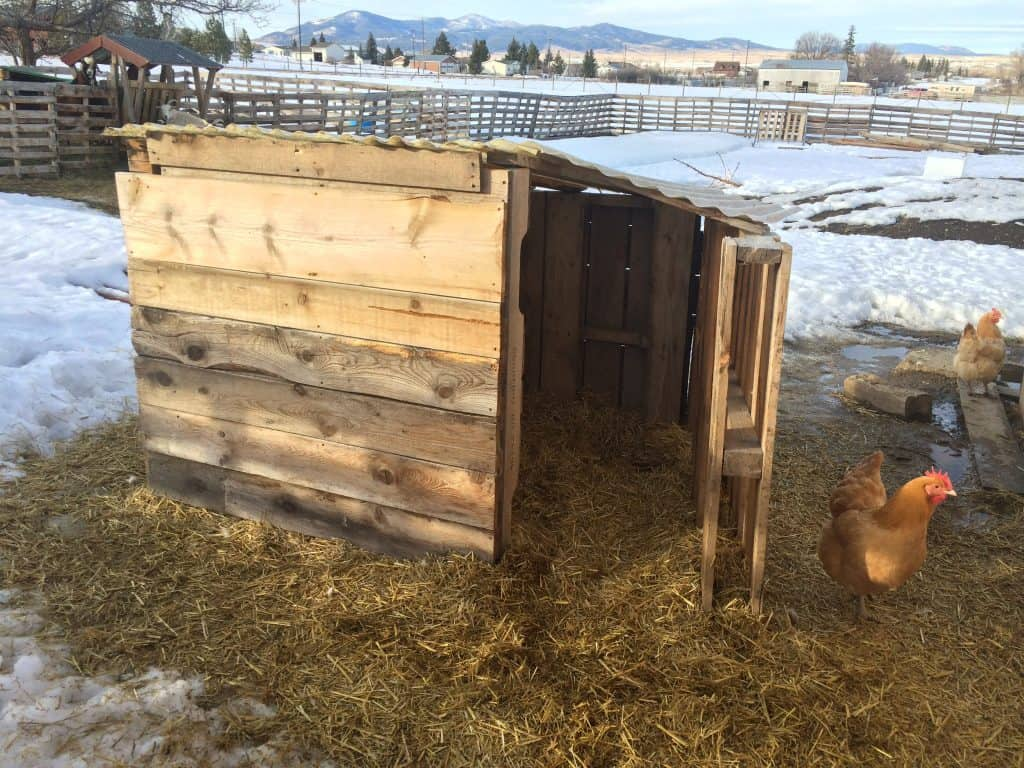 Goat Shelter made out of pallets to keep them safe and warm during the cold, rainy and snowy weather months!