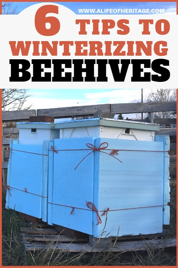 6 Tips to Winterizing Beehives