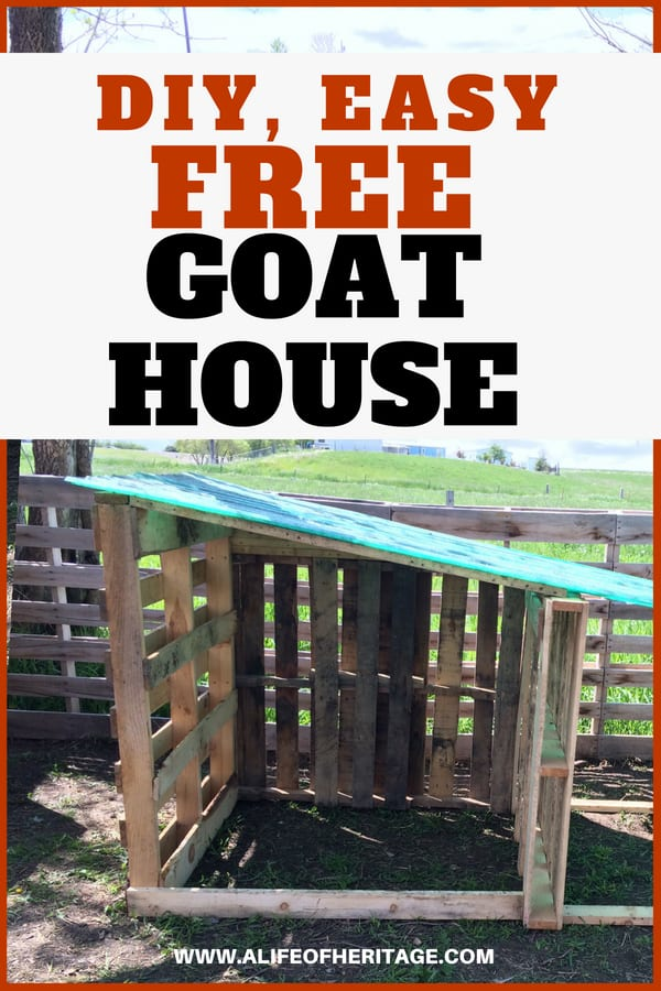 Goat shelter for two goats. So easy to make and free. What could be better? Build it fast and give your goats a great home.
