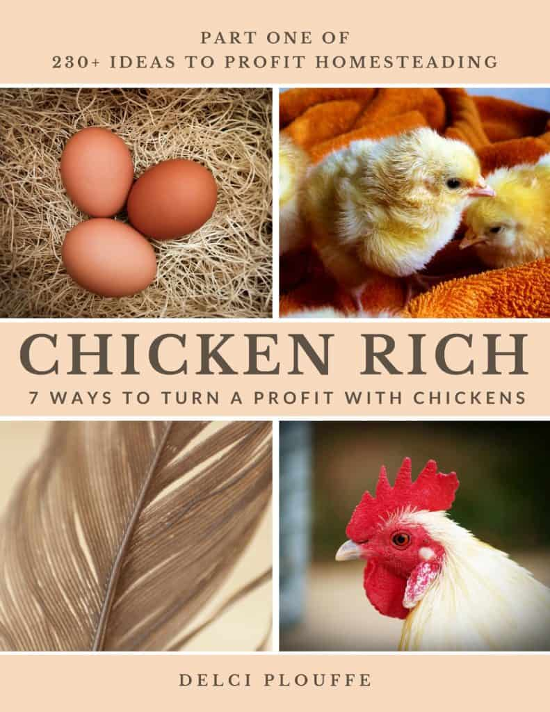 7 ways to profit with chickens. Wouldn't it be nice to have your chickens help pay the bills?