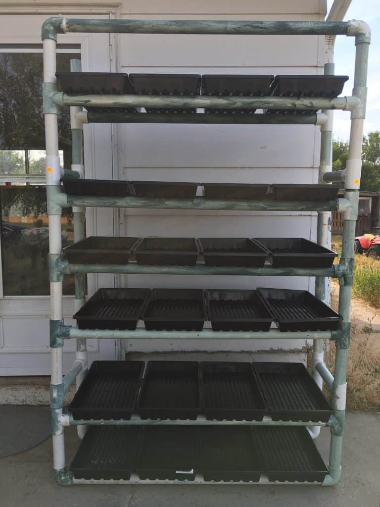 Fodder system set up with 24 trays using PVC pipe as the shelving