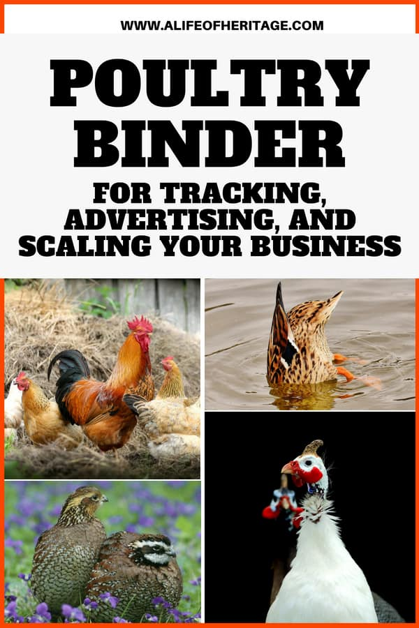 A poultry binder for your poultry business