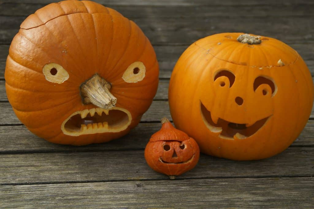 21 of the best pumpkin carving or not ideas rh alifeofheritage com