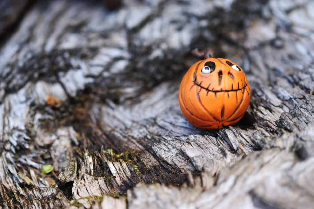 A small pumpkin can be given a face with marker and marshmallow eyes