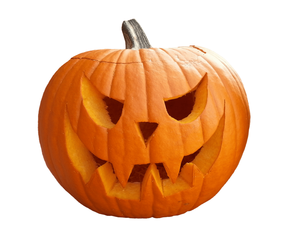 Pumpkin with the traditional carving grin and slanted eyes.