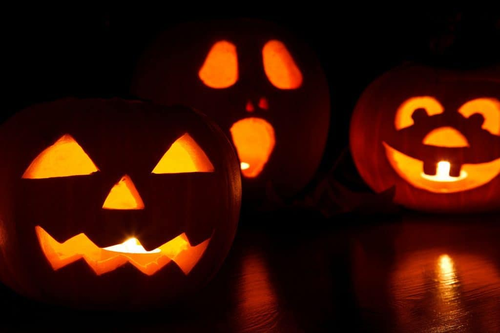 Pumpkin carvings with three different carving options