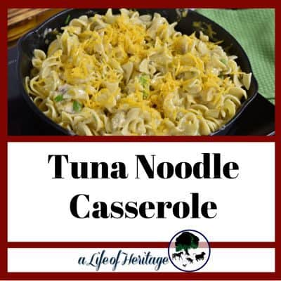 A tuna noodle casserole that is easy and so delicious! And is low cost!
