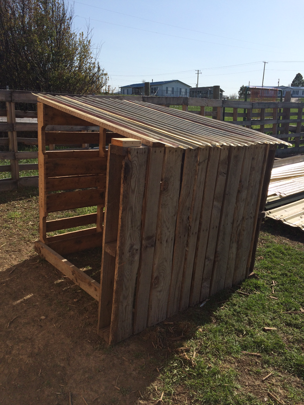 A Goat House. How to build a goat shelter using pallets. An easy and cost effective way to use easy to find material to make great winter shelters for your goats.
